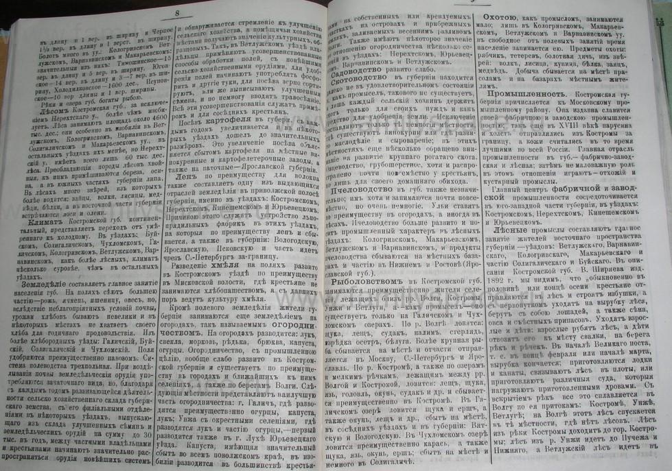 Поиск по фамилии - Костромской календарь на 1907 г. , страница 98