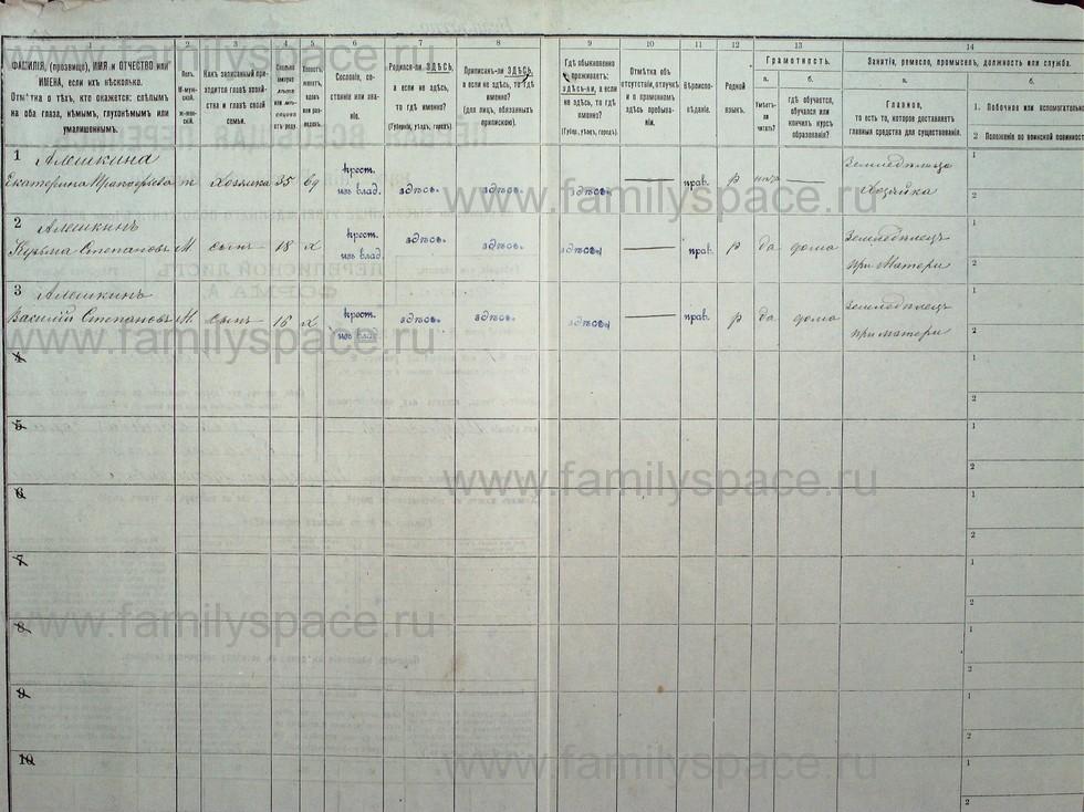 Поиск по фамилии - Первая всеобщая перепись населения Российской империи 1897 года, Рязанская губерния, Данковский уезд, страница 96