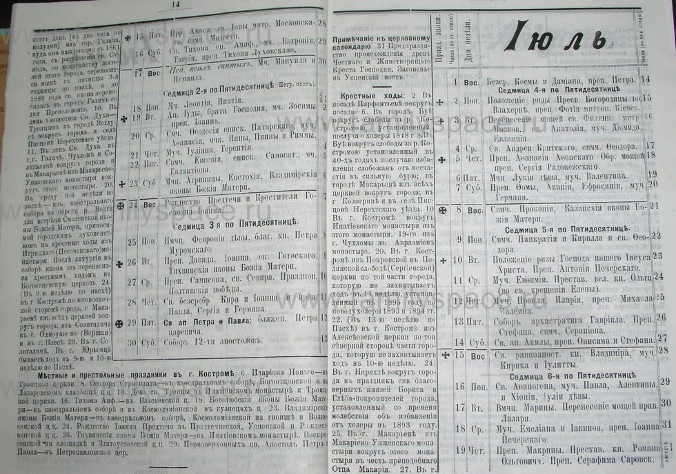 Поиск по фамилии - Костромской календарь на 1907 г. , страница 8