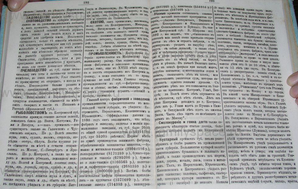 Поиск по фамилии - Костромской календарь на 1900 г. , страница 103