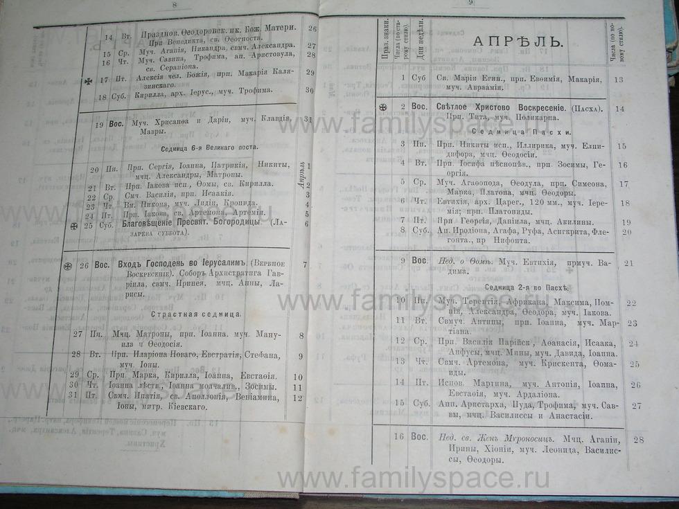 Поиск по фамилии - Костромской календарь на 1895 г. , страница 5