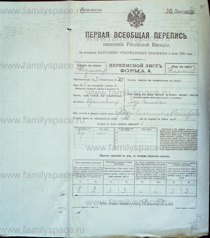 Поиск по фамилии - Первая всеобщая перепись населения Российской империи 1897 года, Рязанская губерния, Ряжский уезд, страница 853