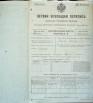 Первая всеобщая перепись населения Российской империи 1897 года, Рязанская губерния, Сапожковский уезд