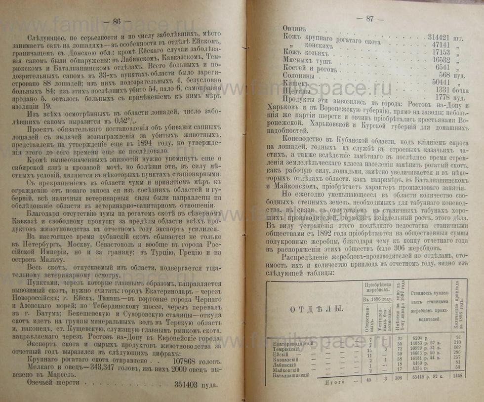 Поиск по фамилии - Кубанский календарь на 1898 год, страница 2086