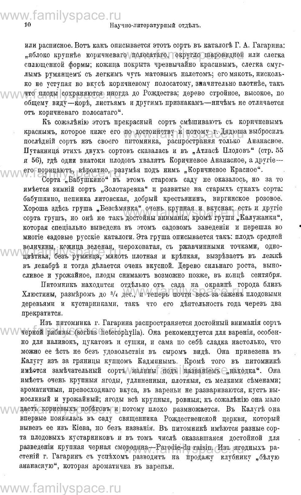 Поиск по фамилии - Памятная книжка и адрес-календарь Калужской губернии на 1911 год, страница 3010