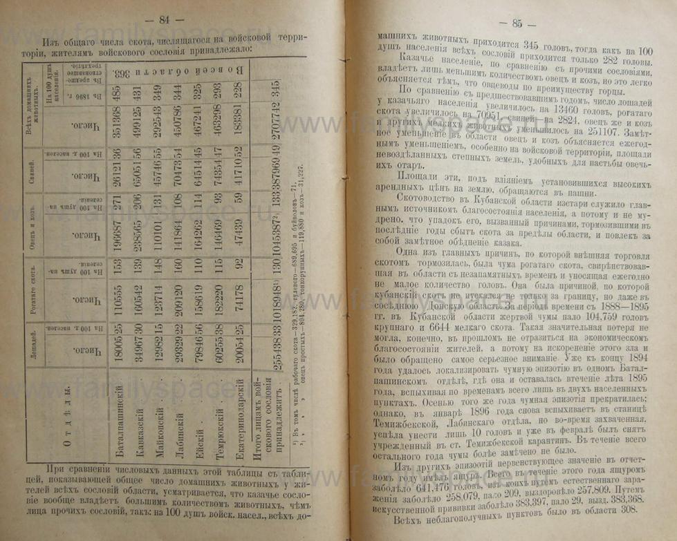 Поиск по фамилии - Кубанский календарь на 1898 год, страница 2084
