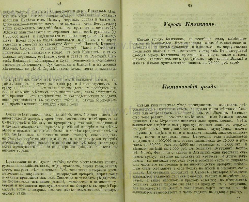 Поиск по фамилии - Памятная книжка Нижегородской губернии на 1865 год, страница 1064