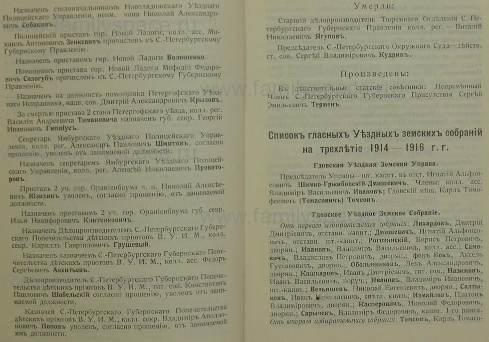 Поиск по фамилии - Памятная книжка Санкт-Петербургской губернии на 1914-1915 гг., страница 1004