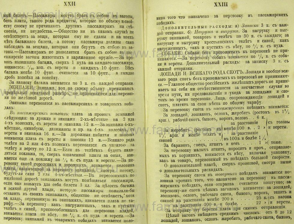 Поиск по фамилии - Памятная книжка Нижегородской губернии на 1865 год, страница 3022